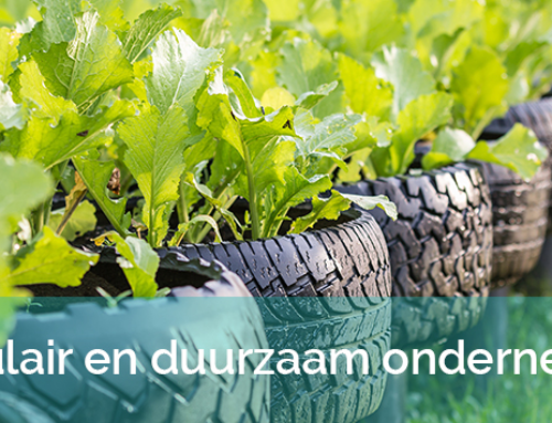 Green Business Club Zaanstad ziet levenslicht